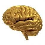 3 Tipps für Ihren Start mit Neuromarketing