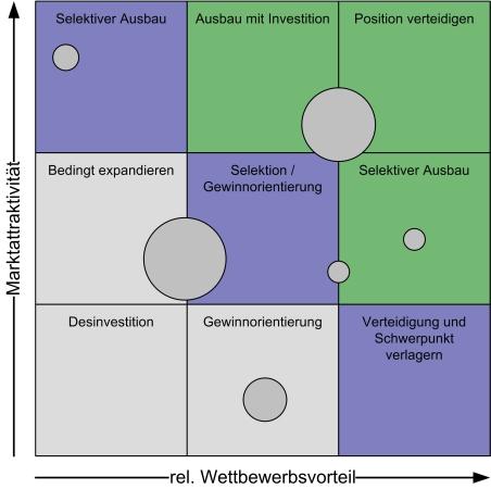 McKinsey Portfolio-Analyse