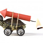 5 wichtige Business Development Tipps!